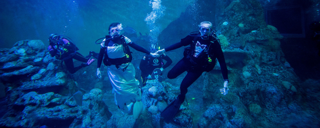 This couple's underwater wedding is seriously wild